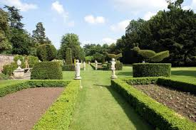 Yew Topiary - garden with yew topiary trees and statues stock photo image