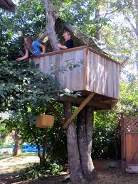 how to build a treehouse 16 steps with pictures