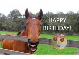 Horse Birthday Meme - funny horse singing happy birthday youtube