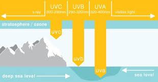 uva and uvb light understanding uvb lights