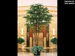 artificial trees shrubs home decor idea