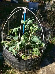 fifth season guide winterize your smart pot raised beds