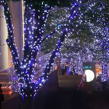 outdoor lighted trees style all home design ideas