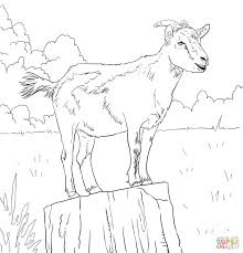 goats coloring pages free coloring pages