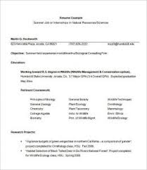 download internship resume examples haadyaooverbayresort com