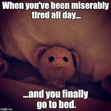 Funny True Memes - image tagged in awake insomnia memes so true memes funny teddy bear