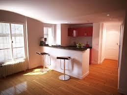 cuisine appartement parisien un appartement à bastille stadler design studio