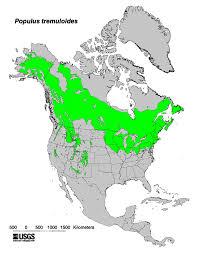 Gardening Zones Usa Map - how aspens grow