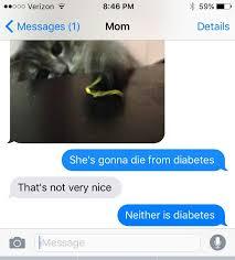 Diabetes Cat Meme - diabetes cat meme by sarah0108 memedroid