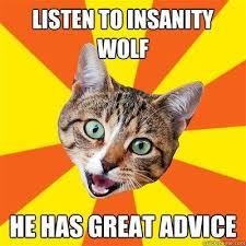 bad advice cat know your meme