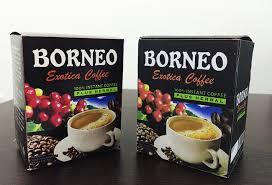 kopi borneo minuman kesehatan untuk pria perkasa obat herbal