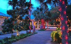 holiday light safari alexandria zoo