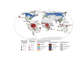 What Is A Bubble Map Who Will Save The Last Primary Forests On Earth U2013 National