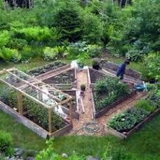 raised garden bed layers the fresh exchange cardboard mulch