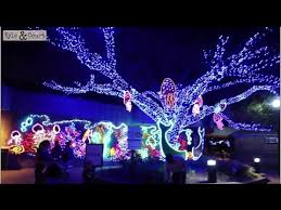 zoo lights houston 2017 dates amazing christmas lights at the houston zoo 2016 houston zoo