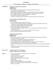 resume format for computer teachers doctrine exercise resume sles velvet jobs