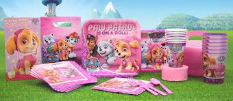 pink paw patrol party supplies party delights