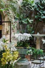 london based interior designer rose uniacke u0027s indoor garden rip