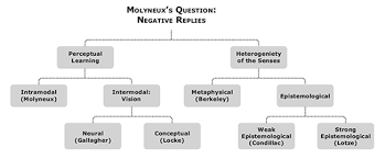 On His Blindness Questions And Answers Molyneux U0027s Question Internet Encyclopedia Of Philosophy