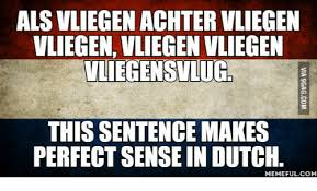 Dutch Memes - 25 best memes about translate nein translate nein memes