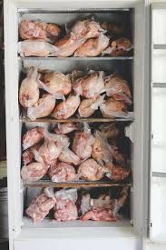 raising meat chickens how we grew a year u0027s supply weed u0027em u0026 reap