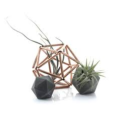 small planter concrete icosahedron set of small planter and sculpture by pasinga