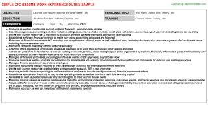 Cfo Resume Sample by Home Design Ideas Cfo Resume Example P1 Cfo Resume Examples