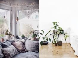 fascinating ideas of indoor plants home decorations decorating
