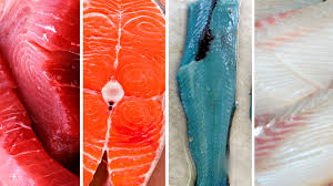 red fish blue fish where the fish flesh rainbow comes from the