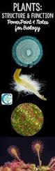 2982 best biology images on pinterest ap biology life science