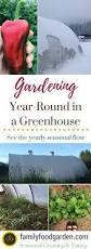 greenhouse gardening growing vegetables year round