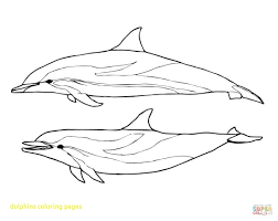 dolphin coloring pages pdf pictures of dolphins to print atomicrocket co