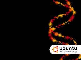 ubuntu glass wallpapers high quality ubuntu wallpapers
