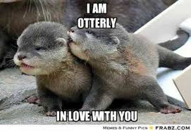 Cute Memes - 40 cute i love you memes we are obsessed with yourtango