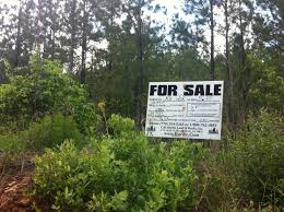 Affordable Homes For Sale In Atlanta Ga Owner Financed Land For Sale In Georgia Ga Hurdle Land And
