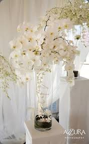 Cylinder Vase Centerpiece by Best 25 Orchid Centerpieces Ideas On Pinterest Orchid Wedding