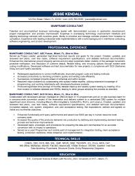 Professional And Technical Skills For Resume Technical Consultant Resume Sample Resume For Your Job Application
