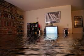 Basement Floor Drain Backing Up Basement Drain Backing Up And Flooding Preventing Toronto