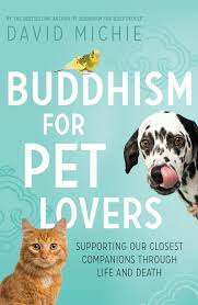 Is It Legal To Bury Your Dog In The Backyard - how to be with your pet during the death process tibetan buddhist