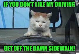 Driving School Meme - raycat driving school imgflip