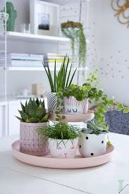Best  Indoor Plant Pots Ideas Only On Pinterest Indoor Plant - Home decoration plants
