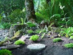 reader photos fairy gardens in the land of washington fine