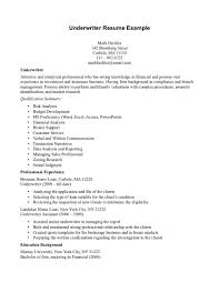 Example Of Wedding Programs Sample Insurance Underwriter Resume Resume Ideas