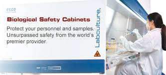 What Is Biological Safety Cabinet Biological Safety Cabinets