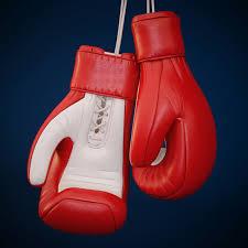 boxing glove by genkot29 3docean