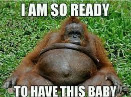 Baby Monkey Meme - third trimester memes labour monkey and pregnancy