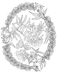 australian gumnut celtic knot coloring page by lorrainekelly on