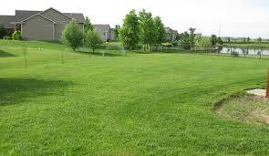 beautiful green grass 1920x1080p hd loversiq