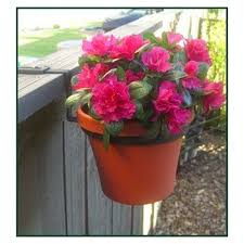 Flower Pot Holders For Fence - amazon com panacea 89049 ring over the deck adjustable flower pot