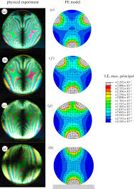 virtual experiments physical validation dental morphology at the